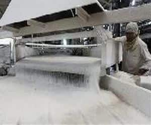 Sugar decontrol: An expert panel led by PMEAC chairman C Rangarajan on Friday suggested a mechanism for decontrolling sugar . The panel is in favour of providing freedom to the sugar mills to sell their products in the open market. It has also recommended scrapping of state declared cane prices. The committee has also recommended fair and remunerative price (FRP) for cane purchase.