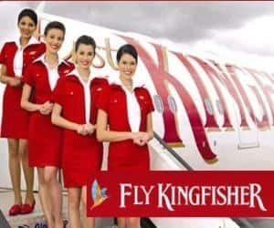 KINGFISHER AIRLINES   Gained 10.58% to close at Rs 15.15 Reason: Company said would re-enter IATA distribution platform very shortly and would start clearing January salary from Wednesday