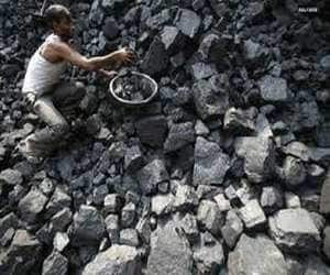 COAL INDIA  Brokerage: JP Morgan  Rating: UNDERWEIGHT  Target: Rs 295  Rationale: Investors need to wait for an articulated strategy on the dividend policy going forward, given that historically dividend payout has been less than 25%. Reports also suggest that CCI has decided to probe Coal India for alleged misuse of market position; this could weigh on the stock.