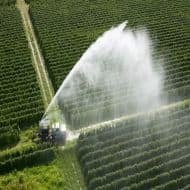 Jain Irrigation falls 12% on 21% cut in subsidy on NMSA