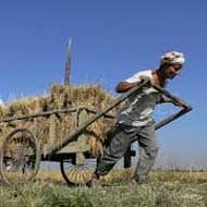 Complete loan waiver for Maha farmers not possible: Govt