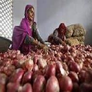 Govt slashes export price of onions to $400/tonne