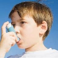 Cipla rises 4% on asthma drug launch, Kotak says buy