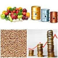Union Budget 2015: Commodity mkt participants expect positive action- Geofin