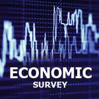 Economic Survey: Calls for reforms for long-term growth, says India Ratings