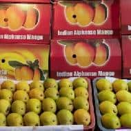 Indian mangoes banned by European Union