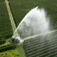 Jain Irrigation Q3 net loss at Rs 39.68 cr