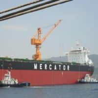 Albula Investment Fund sells 1 crore shares of Mercator