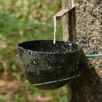 India initiates dumping probe against rubber from 5 nations