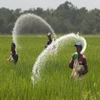 2 JVs to be formed for Talcher urea plant revival in Odisha