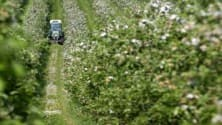My TV : Global agriculture moving from surplus to deficit: Alan Willits