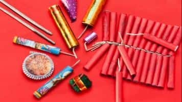 SME Business:Domestic firecracker industry facing loss of Rs 1,000 cr