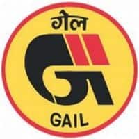 GAIL not keen on pact with Iranian co: Pradhan