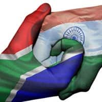 'India, Africa must look at opportunities for diversification'