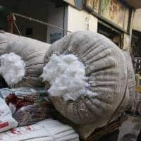 Welspun scandal follows yrs of plummeting Egyptian cotton output