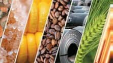 My TV : Here are some commodity trading ideas from T Gnanasekar