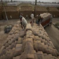 Govt sees record foodgrain output at 271.98 mt for 2016-17