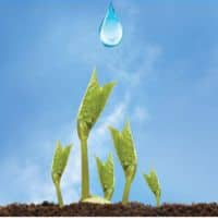 Jain Irrigation wins Rs 189-cr irrigation project; share up 1%