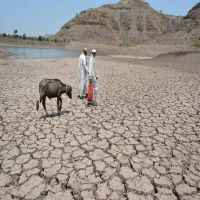 Don't make mistake of not declaring drought on time: SC to govt