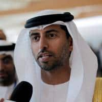 Too soon to decide on extending supply deal: UAE oil minister