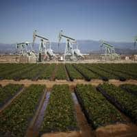 Oil prices slump on bloated US fuel inventories