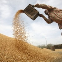 Govt aims record foodgrain production at 273 MT in 2017-18