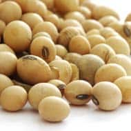 Soybean futures may trade on mixed note: Angel