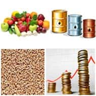 Things to know before trading in commodity Futures
