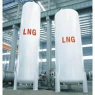 India receives its biggest LNG cargo